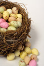 Birds chocolate coated easter eggs nest sugar 免版税库存照片