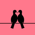 Birds couple forming heart