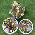 Birds eye view of fairy garden in a flower pot Royalty Free Stock Photo