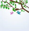 Birds family Royalty Free Stock Photo