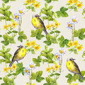 Birds in floral garden - flowers, herbs. Watercolor. Repetitive pattern. Royalty Free Stock Photo