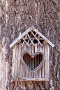 Birds house with heart shaped entrance on tree Stock Photo