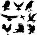 Birds icon set with isolated background Stock Photo