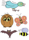 Birds and insects Royalty Free Stock Photo