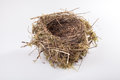 Birds nest real on white background Royalty Free Stock Image