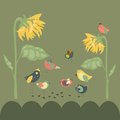 Birds pecking sunflower seeds vector cute colored are Royalty Free Stock Image