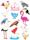 Birds set_eps