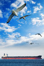 Birds and ship flying to the barge in open sea Royalty Free Stock Image