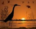 Birds in sunset swamp illustration Royalty Free Stock Photo