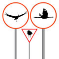 Birds traffic sign Royalty Free Stock Photos