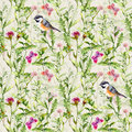 Birds, wild herbs, grass, flowers, spring butterflies. Repeated pattern. Watercolor Royalty Free Stock Photo