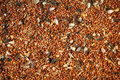 Birdseed Background Royalty Free Stock Image