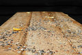 Birdseed on wooden table Royalty Free Stock Photo