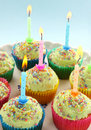 Birthday Candle Cup Cakes Royalty Free Stock Photo
