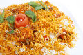 Biryani rice indian style Stock Images