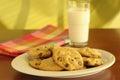 Biscotti casalinghi Fotografie Stock
