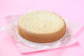 Biscuit sponge cake on a baking paper on a light pink background Stock Image