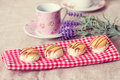Biscuits de puces de chocolat Photo stock