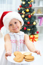 Biscuits to Santa Royalty Free Stock Image