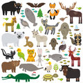 Bison bat manatee fox elk horse wolf partridge fur seal Polar bear Pit viper snake Mountain goat raccoon Eagle skunk parakeet Jagu Royalty Free Stock Photo
