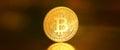 Bitcoins, bit coin BTC the new virtual money