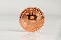 Bitcoins one bitcoin bit coin btc the new virtual money Royalty Free Stock Photography