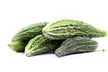 Bitter gourd Royalty Free Stock Photo