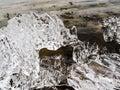 Bizarre shape of melting ice crystals Royalty Free Stock Photo