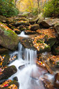 Blåa ridge mountain autumn stream Royaltyfria Bilder