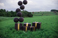 Black balloons and big black boxes in the landscape.
