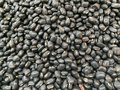 Black bean a texture background Royalty Free Stock Images