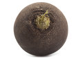 Black big radish Royalty Free Stock Photo