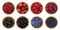 Black-blue and red berries isolated on white background. Royalty Free Stock Photo