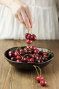 Black Bowl with cherries Royalty Free Stock Photo