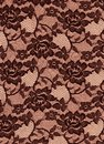 Black brown lace roses fabric background for texture is a rose floral elegant pattern Royalty Free Stock Photo