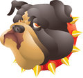 Black bulldog head isolated illustration Royalty Free Stock Photo