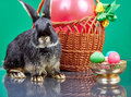 Black bunny sitting near a basket with a red balloon and a vase with easter eggs Royalty Free Stock Photography