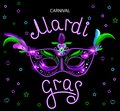 Black carnival mask with violet pink blue feathers on black background. Neon banner. Vector card with handwritten calligraphy text Royalty Free Stock Photo