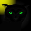 Black cat background for halloween with green eyes at night under the moon vector illustration Stock Photos