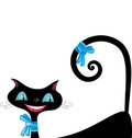 Black cat with blue eyes Royalty Free Stock Images