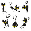 Black cat cats collection for your design Stock Photography
