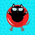 Black cat floating on red pool float water circle. Top air view. Hello Summer. Swimming pool water. Sunglasses. Lifebuoy. Cute car