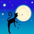 Black cat in front of the full Moon Stock Images