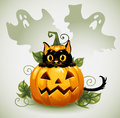 Black cat in a Halloween pumpkin and ghost. Royalty Free Stock Images