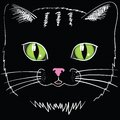 Black cat head colorful illustration with for your design Royalty Free Stock Photography