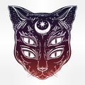 Black cat head portrait with moon and four eyes. Royalty Free Stock Photo