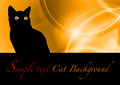 Black cat on the orange background Royalty Free Stock Photo