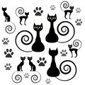 Black cat silhouettes Stock Image