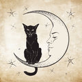 Black cat sitting on the moon. Wiccan familiar spirit vector Royalty Free Stock Photo
