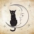 Black cat sitting on the moon wiccan familiar spirit vector illustration Stock Photo